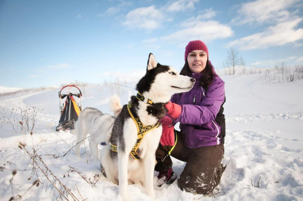 Best dogs to go running with
